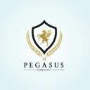 Photo de profil pour le VTC Pegasus company  à